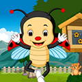 Games4King Shell Lady Beetle Rescue